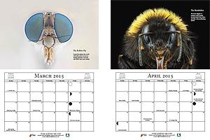 Extreme Macro Calendar - March & April