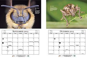 Macro Calendar 2015 - September & October