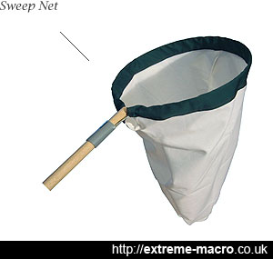 Sweep Net for collecting macro specimens to stack in the studio