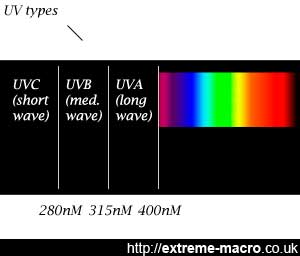 The ultraviolet spectrum